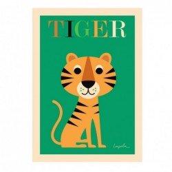 Affiche – Tigre