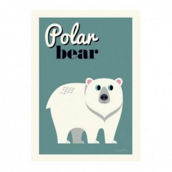 Affiche – Ours polaire