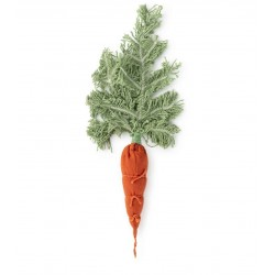 DIY - Cathy The Carrot