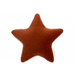 Coussin Aristote étoile...
